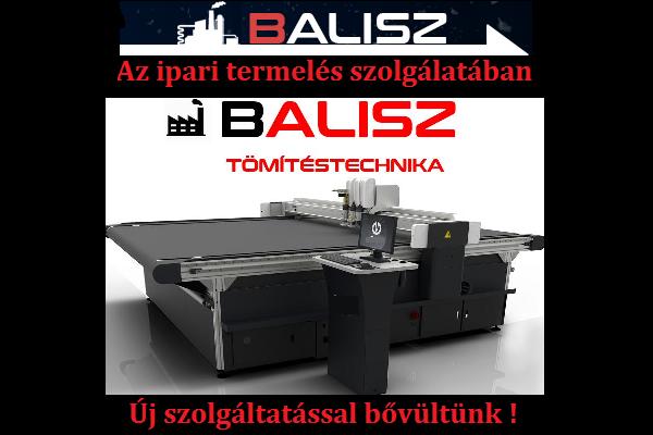 Balisz Group Kft - tömítésgyártás , tömítéskészítés, stancolás
